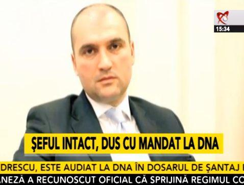 sorin_alexandrescu_Intact