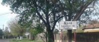 comuna-Nana