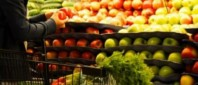 importuri-fructe-e1413958649770