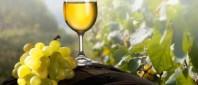 vin-alb-e1410682508348