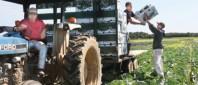 fermieri-asociatie-e1416472203165