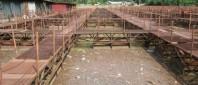 pastravaria-bradisor-e1422533037109