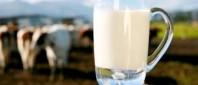 lapte-de-la-ferma